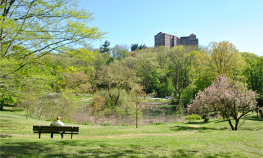 Philadelphia parks are crucial to the city's water management system.