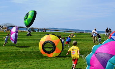 Hundreds of kids and adults in Washington state turn out annually to Chambers Creek Regional Park's fun kite festival.