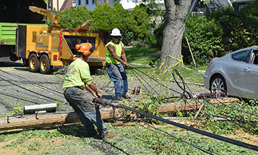 NYC Parks staff and municipal workers clear debris after a severe storm caused extensive neighborhood damage.