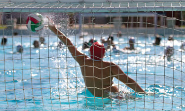 Including water polo as part of your agency's service offerings could be a welcome addition to your members' overall fitness routine and a way to generate more revenue.